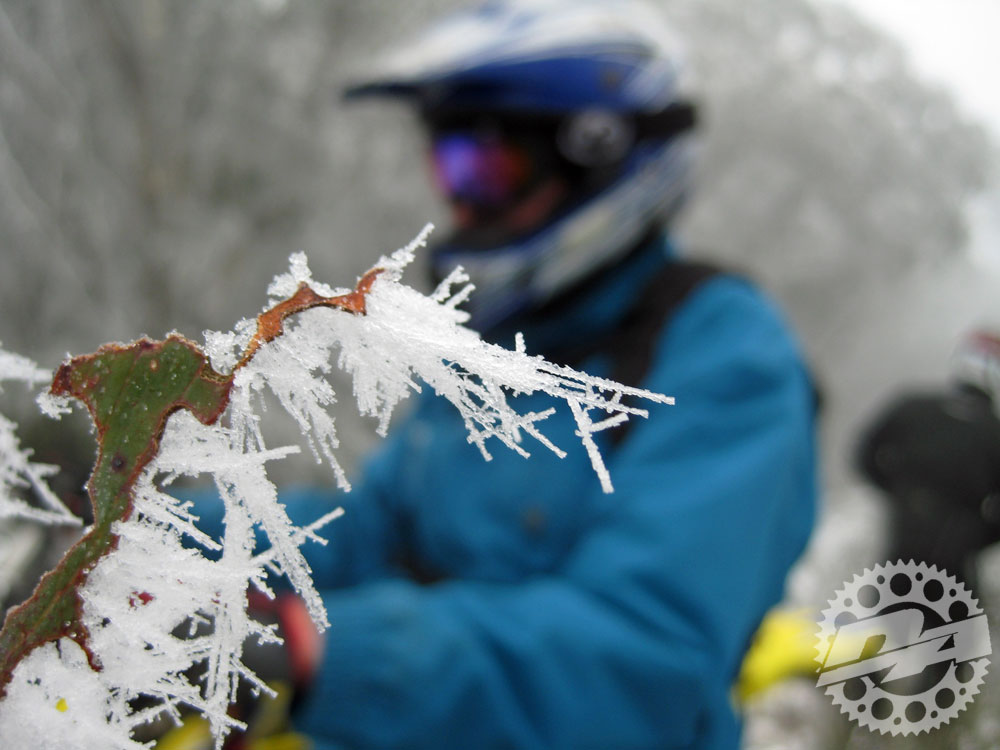 snow-inset-1