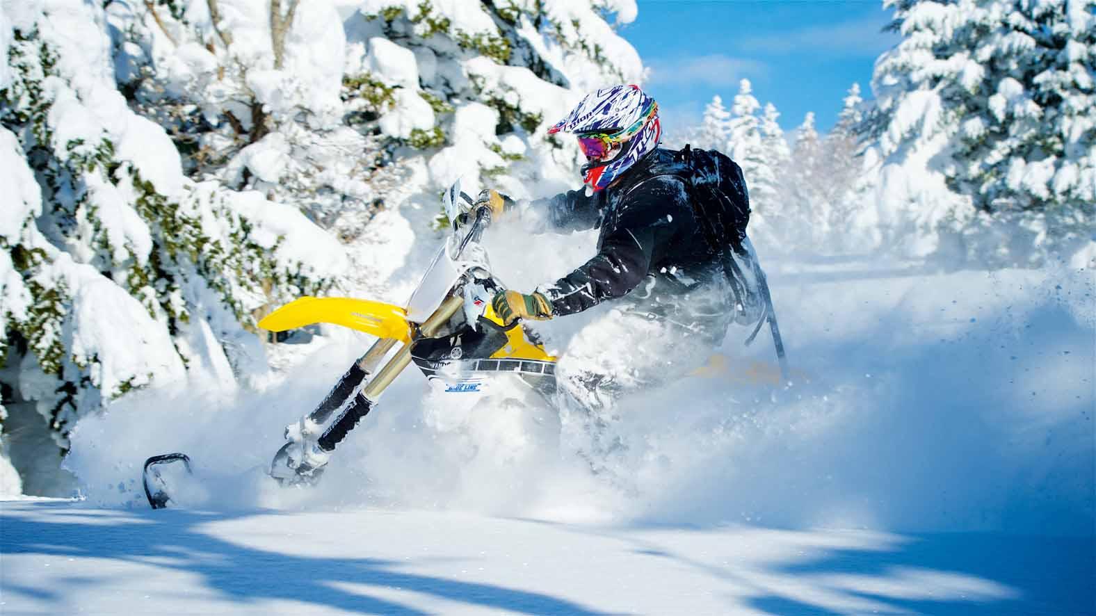 SNOW INSET (1)